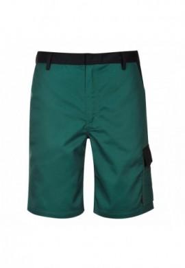TX37 Pantaloni Scurti Cologne